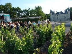 Dégustation de vin @ destination bordeaux